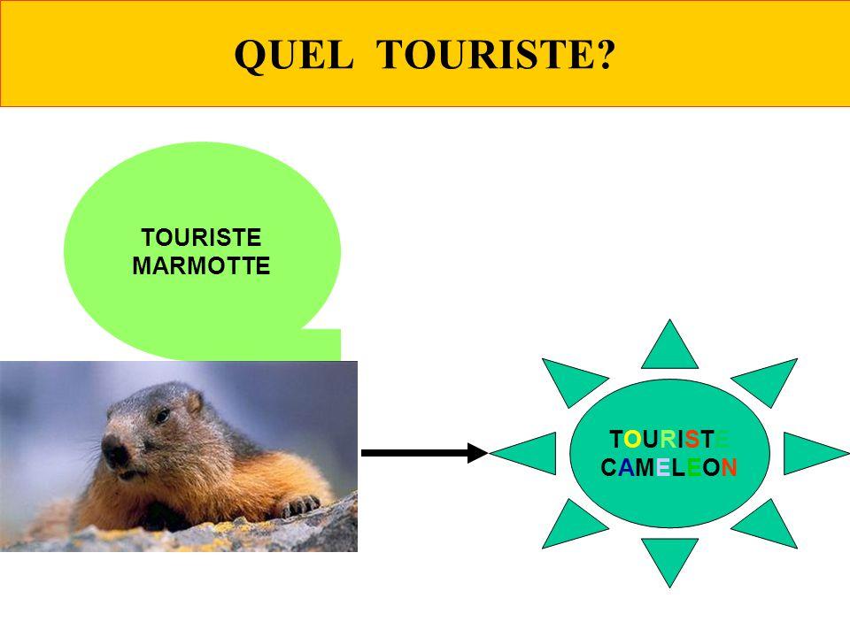 QUEL TOURISTE? TOURISTE MARMOTTE TOURISTECAMELEONTOURISTECAMELEON