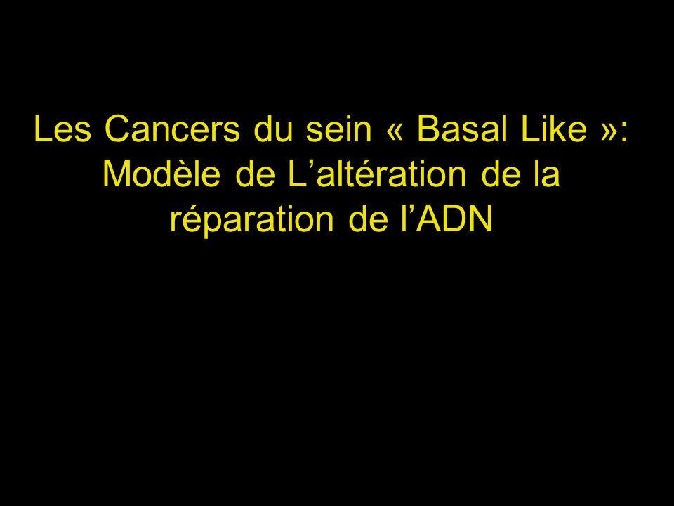Les Cancers du sein « Basal Like »: Modèle de Laltération de la réparation de lADN