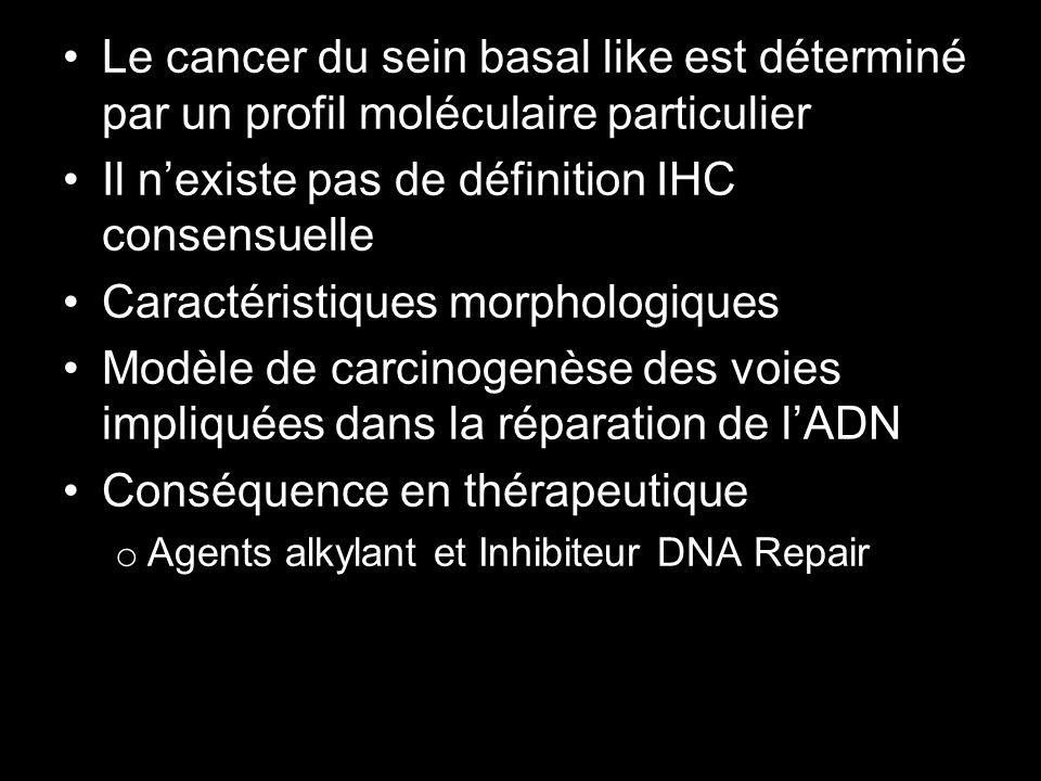 Le cancer du sein basal like est déterminé par un profil moléculaire particulier Il nexiste pas de définition IHC consensuelle Caractéristiques morpho