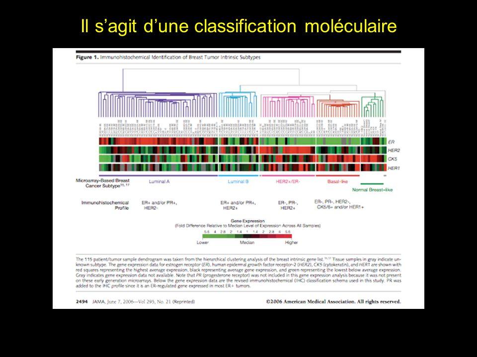 Il sagit dune classification moléculaire