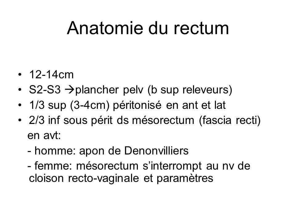 Anatomie du rectum 12-14cm S2-S3 plancher pelv (b sup releveurs) 1/3 sup (3-4cm) péritonisé en ant et lat 2/3 inf sous périt ds mésorectum (fascia recti) en avt: - homme: apon de Denonvilliers - femme: mésorectum sinterrompt au nv de cloison recto-vaginale et paramètres
