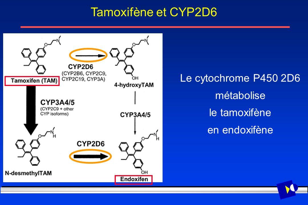 Le cytochrome P450 2D6 métabolise le tamoxifène en endoxifène