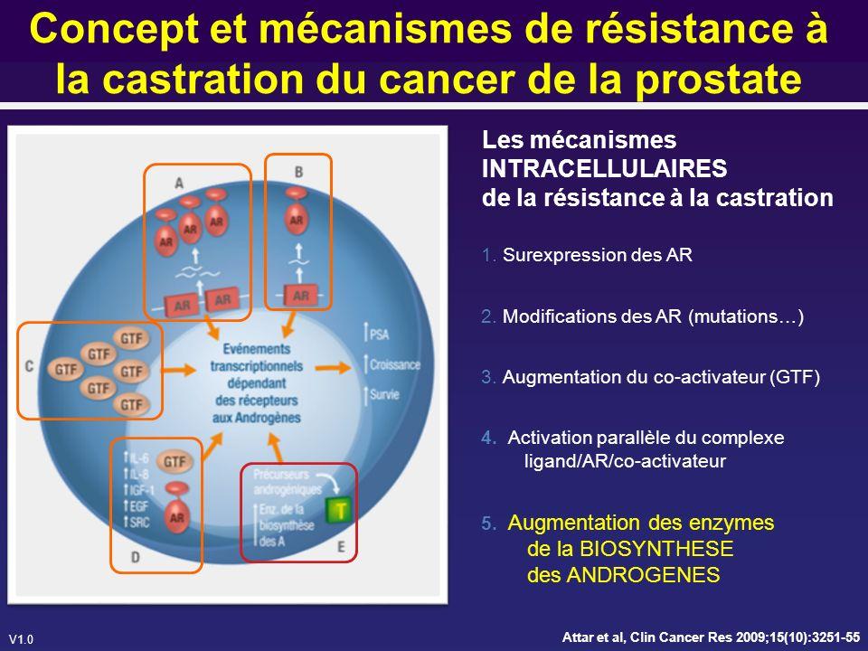 V1.0 Lacétate dabiraterone Inhibiteur oral et irréversible de CYP17 (P450c17) 17 –hydroxylase C17,20-lyase Bloque la production de testostérone dans les testicules, les glandes surrénaliennes et la tumeur 3β-Acetoxy-17-(3-pyridyl)androsta- 5,16-diene MW = 391.55 Barrie SE et al, J Steroid Biochem Mol Biol, 1994