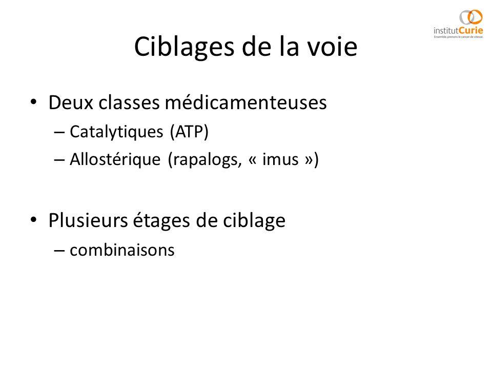 Ciblages de la voie Deux classes médicamenteuses – Catalytiques (ATP) – Allostérique (rapalogs, « imus ») Plusieurs étages de ciblage – combinaisons