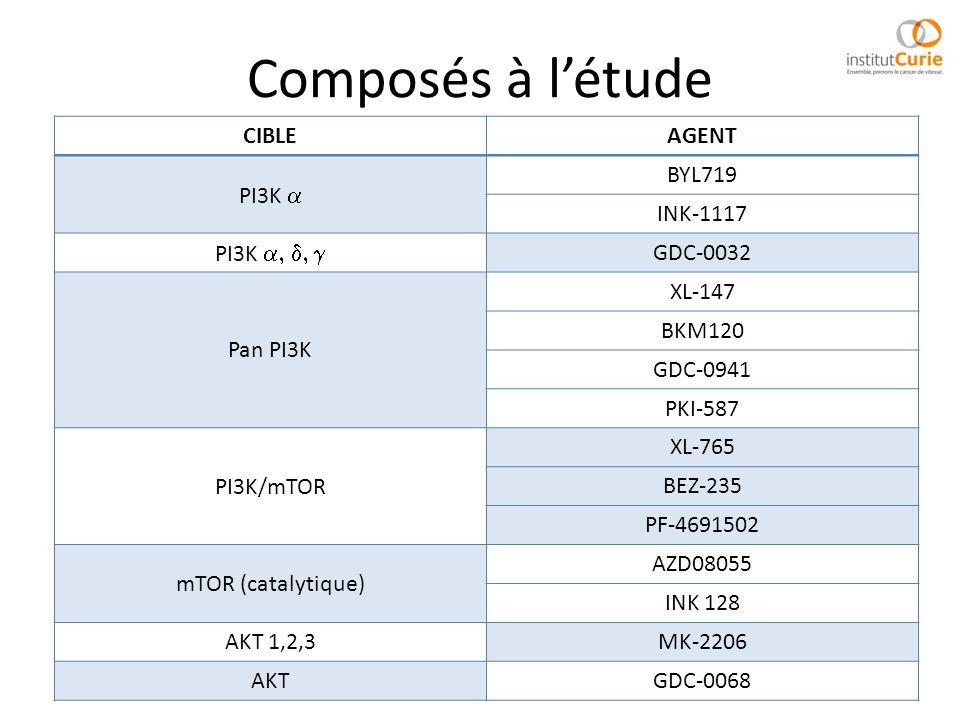 Composés à létude CIBLEAGENT PI3K BYL719 INK-1117 PI3K GDC-0032 Pan PI3K XL-147 BKM120 GDC-0941 PKI-587 PI3K/mTOR XL-765 BEZ-235 PF-4691502 mTOR (cata