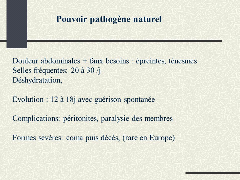 Pathogénie Pouvoir invasif Invasion de la muqueuse colique Invasine IpaD pénétration dans lentérocyte Invasine IpaB,IpaC rupture de la vacuole de phagocytose et libération de la bactérie dans le cytoplasme La bactérie se multiplie et acquiert une « mobilité » qui entraîne: une dissémination de la bactérie vers les cellules adjacentes (Ics: IcsA,Ics B intracellular spread):