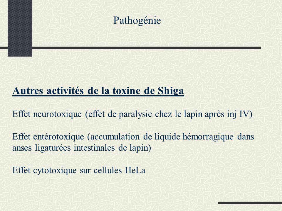 Autres facteurs de virulence chez les shigella Vérotoxine (toxine voisine de la toxine de Shiga) Entérotoxines shiga-like Linvasion des cellules de la muqueuse colique et les effets toxiques Une forte réaction inflammatoire avec survenue dulcérations, formation dabcès, des hémorragies se traduisant par des selles sanglantes et mucopurulentes Pathogénie