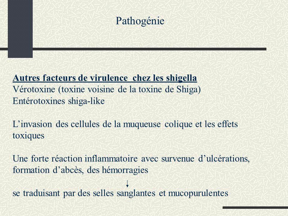 Diagnostic Direct: Aspect des selles ; un frottis montrera la présence de nombreux polynucléaires Coprocultures : ensemencement des selles sur milieu sélectif Gélose salmonelle-shigelle: colonies incolores Identification biochimique +typage pas de recherche du pouvoir invasif (test de Sérény) Recherche de vérotoxine (test : agglutination de particules de latex sensibilisées) Indirect Sans intérêt sauf pour relier des états rhumatismaux à S.flexneri