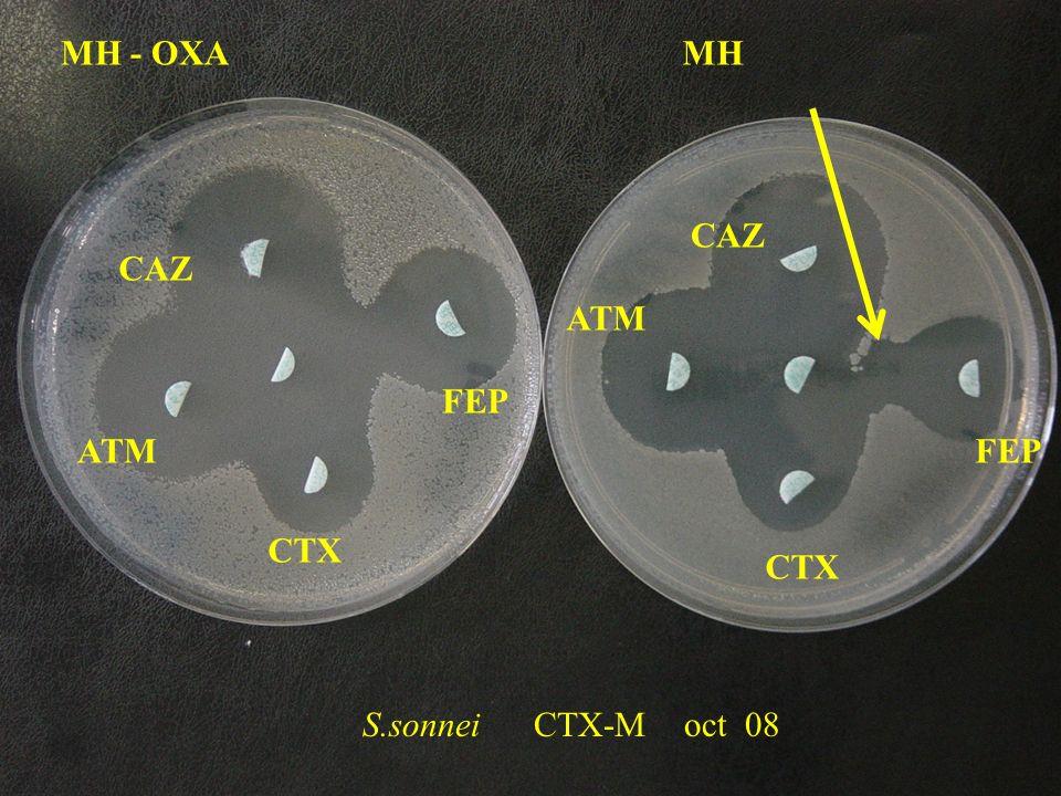 S.sonnei CTX-M oct 08 MH - OXA CTX FEP CAZ ATM CAZ ATM MH