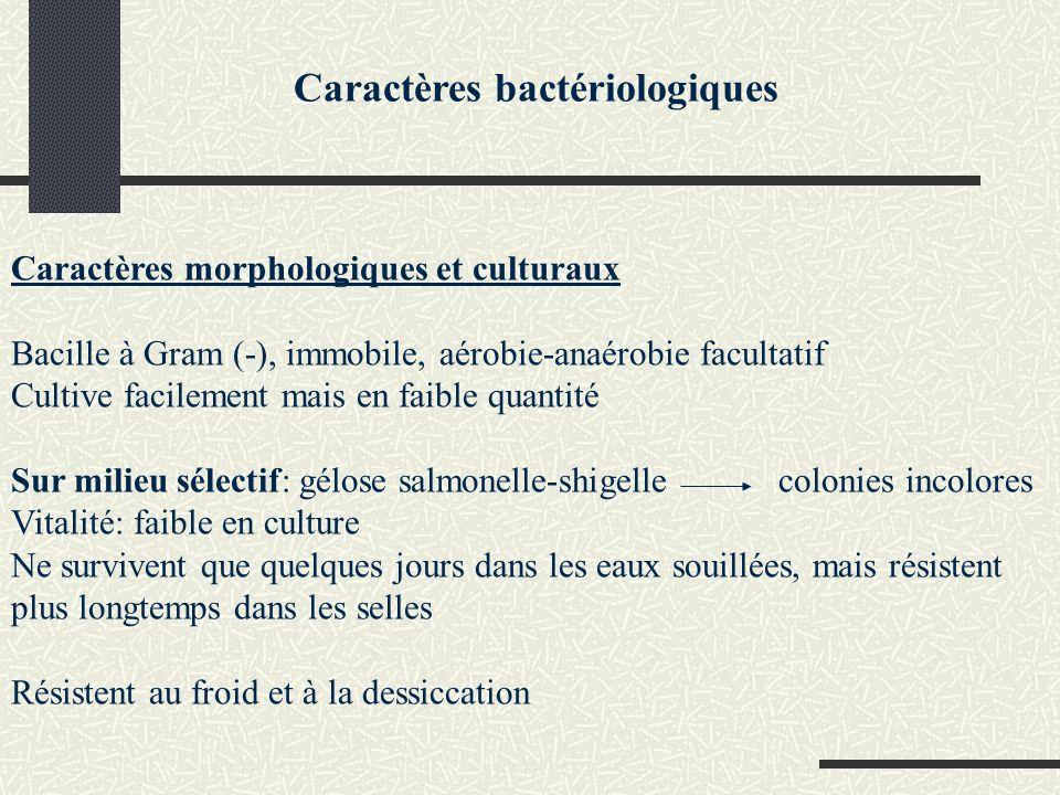 Caractères bactériologiques Structure antigénique Ag O somatique: Ag K denveloppe Caractères biochimiques peu nombreux Lactose (-)