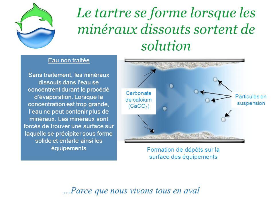 3 Le tartre se forme lorsque les minéraux dissouts sortent de solution …Parce que nous vivons tous en aval Eau non traitée Sans traitement, les minéraux dissouts dans leau se concentrent durant le procédé dévaporation.