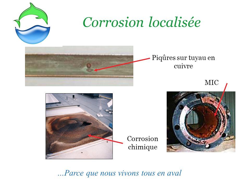 Corrosion localisée Piqûres sur tuyau en cuivre MIC Corrosion chimique …Parce que nous vivons tous en aval