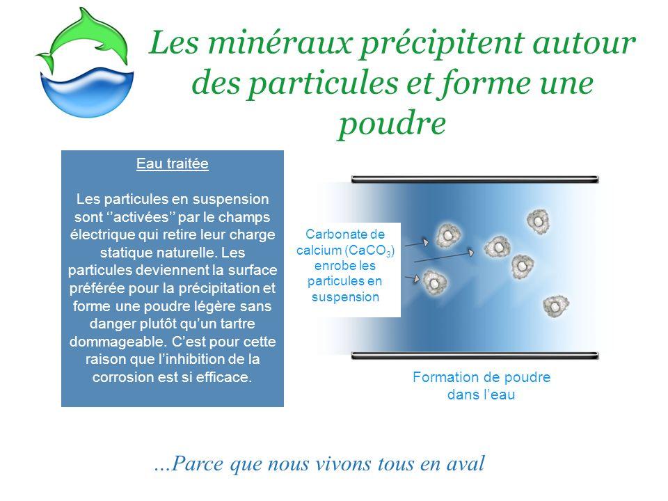 Tartre ou Poudre.Avec le PEM, les minéraux précipites en une poudre légère non adhérente.
