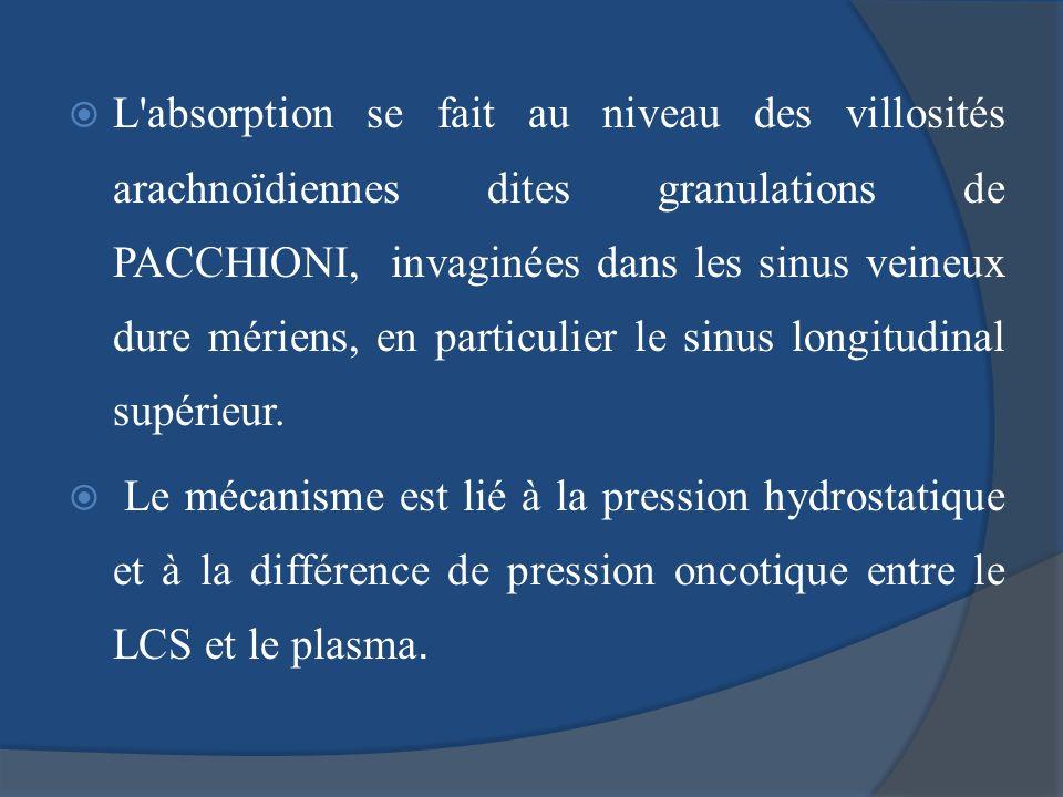 L'absorption se fait au niveau des villosités arachnoïdiennes dites granulations de PACCHIONI, invaginées dans les sinus veineux dure mériens, en part