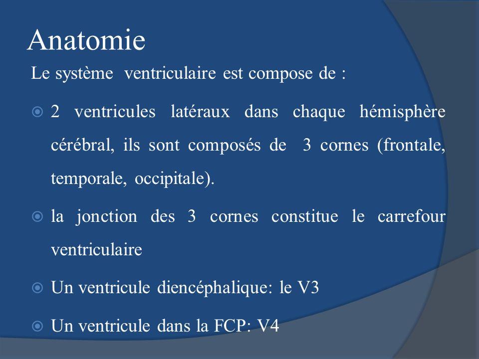 Anatomie Le système ventriculaire est compose de : 2 ventricules latéraux dans chaque hémisphère cérébral, ils sont composés de 3 cornes (frontale, te
