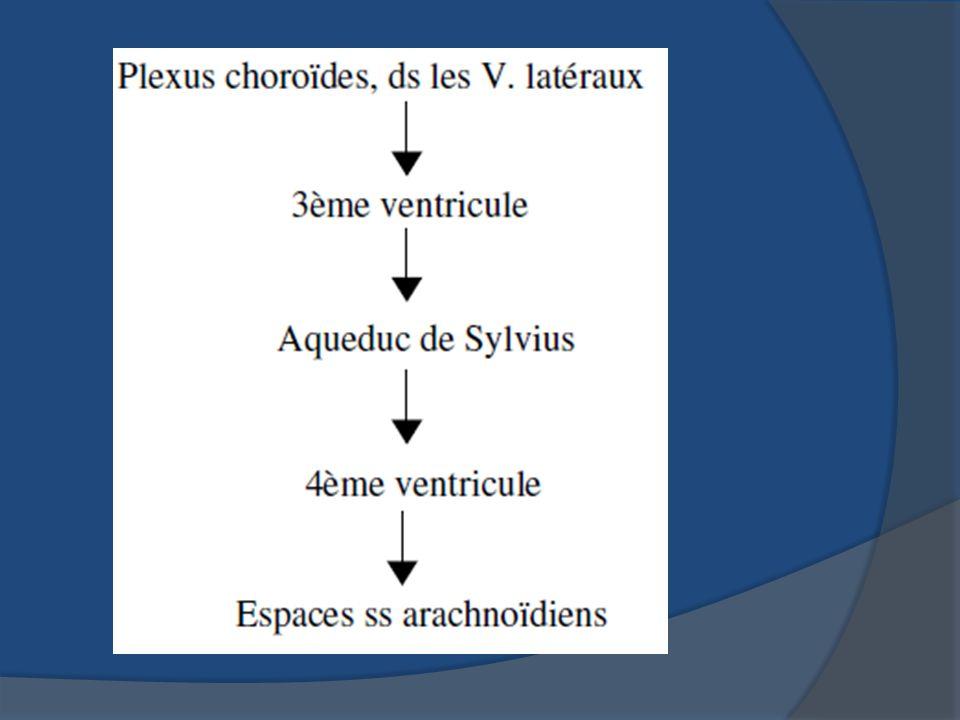 se voie au cours des tumeurs des plexus choroïdes ( PAPILLOME des plexus choroïde) Cest une tumeur bénigne.