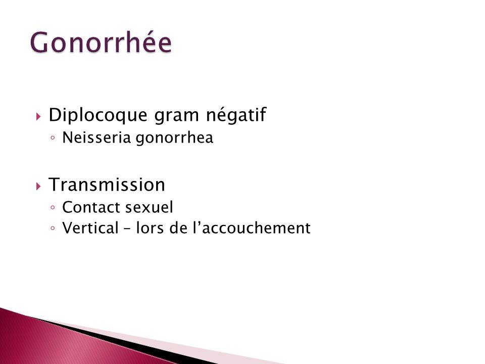 Diplocoque gram négatif Neisseria gonorrhea Transmission Contact sexuel Vertical – lors de laccouchement