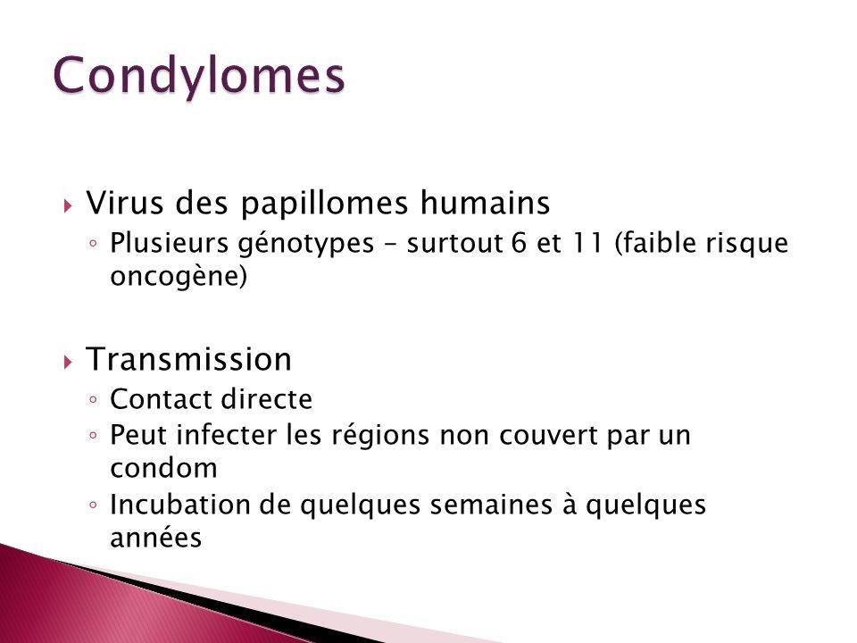 Virus des papillomes humains Plusieurs génotypes – surtout 6 et 11 (faible risque oncogène) Transmission Contact directe Peut infecter les régions non
