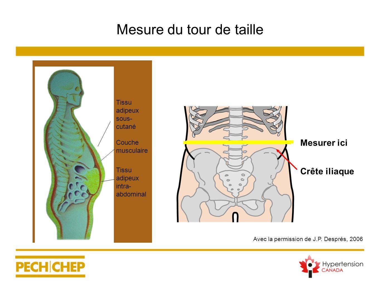 Avec la permission de J.P. Després, 2006 Mesurer ici Crête iliaque Mesure du tour de taille Tissu adipeux sous- cutané Couche musculaire Tissu adipeux