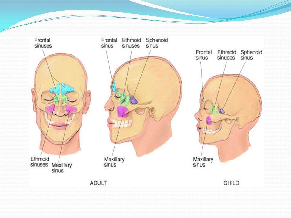 La présentation IVRS virale qui durent de 5 à 10 jours: écoulement nasal/congestion +/- toux Lorsquelle se complique dune sinusite, 3 scénarios: 1.