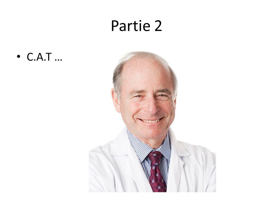 Partie 2 C.A.T …