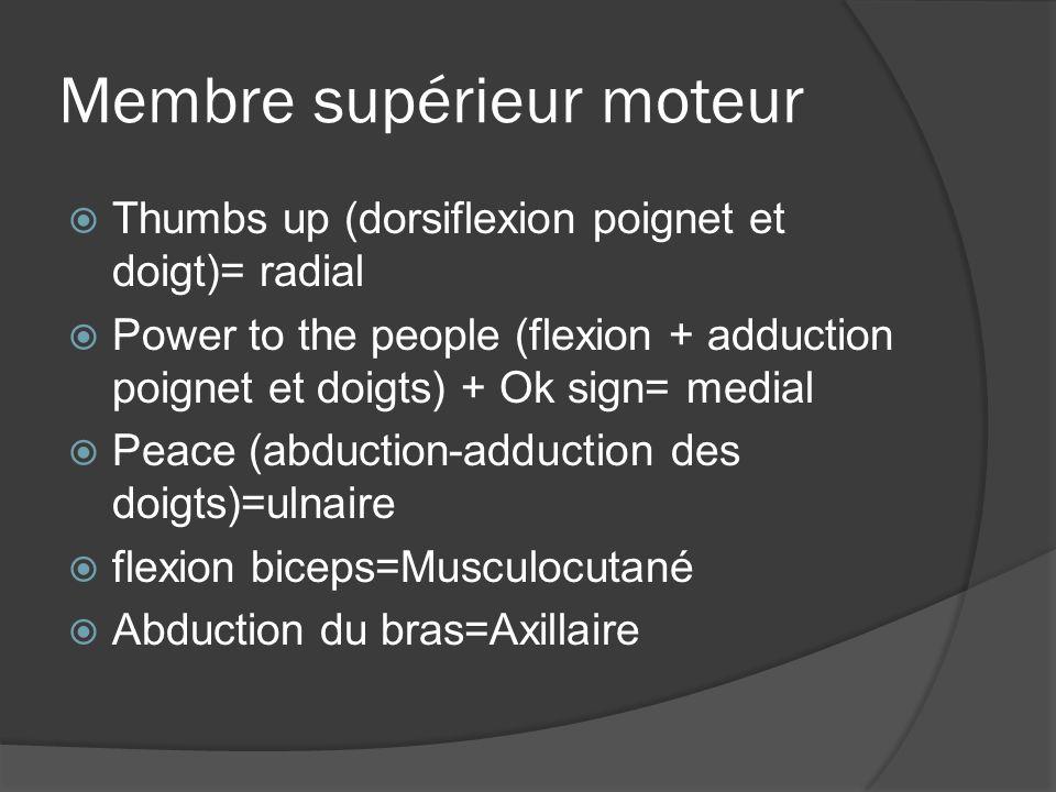 Membre supérieur moteur Thumbs up (dorsiflexion poignet et doigt)= radial Power to the people (flexion + adduction poignet et doigts) + Ok sign= media
