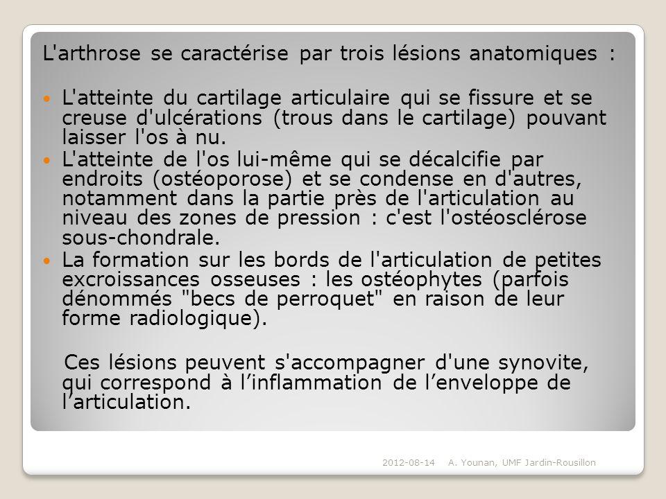 L'arthrose se caractérise par trois lésions anatomiques : L'atteinte du cartilage articulaire qui se fissure et se creuse d'ulcérations (trous dans le