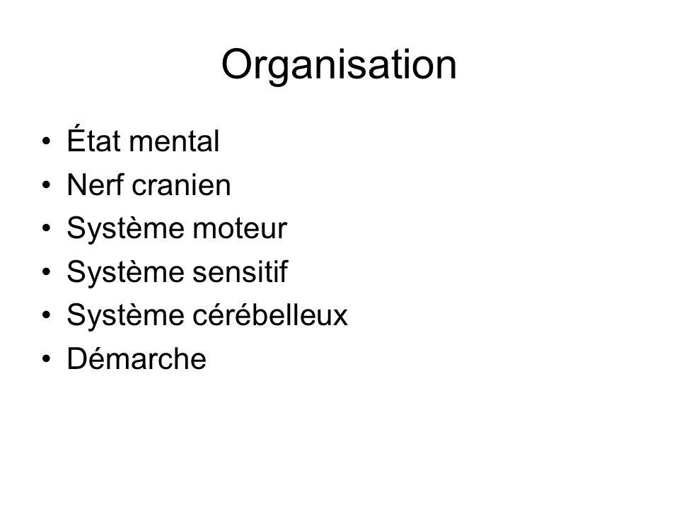 Organisation État mental Nerf cranien Système moteur Système sensitif Système cérébelleux Démarche