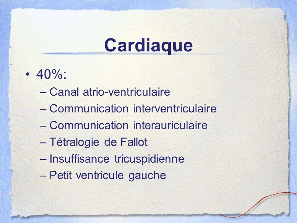Cardiaque 40%: –Canal atrio-ventriculaire –Communication interventriculaire –Communication interauriculaire –Tétralogie de Fallot –Insuffisance tricus