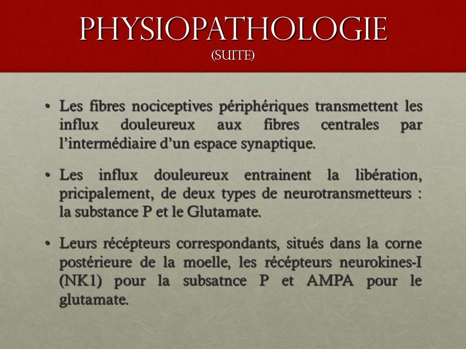 Physiopathologie (suite) Les fibres nociceptives périphériques transmettent les influx douleureux aux fibres centrales par lintermédiaire dun espace s