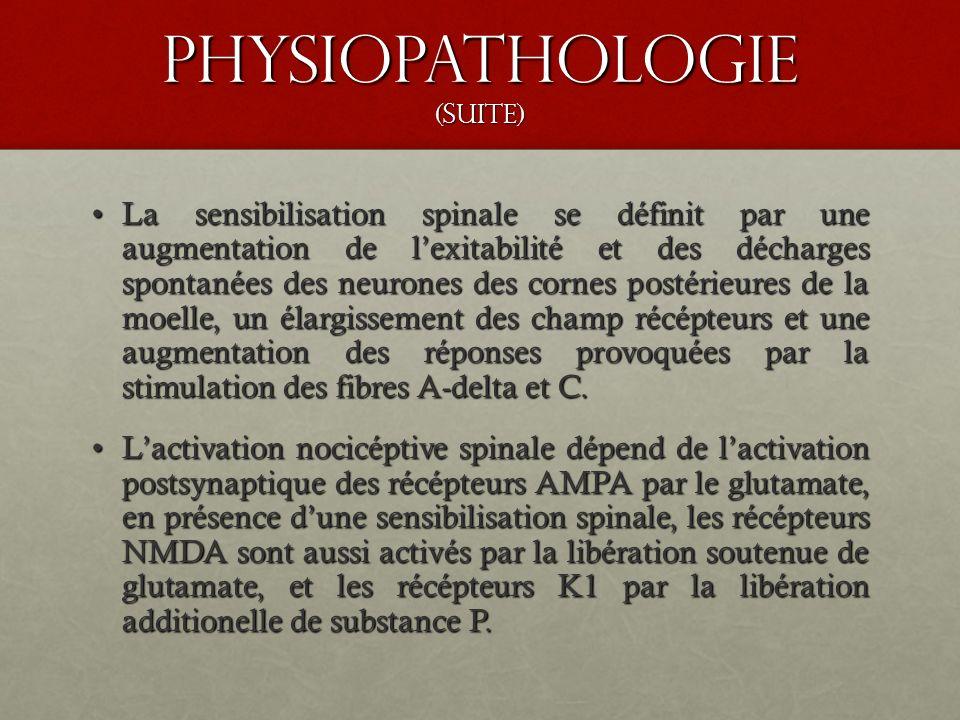 Physiopathologie (suite) La sensibilisation spinale se définit par une augmentation de lexitabilité et des décharges spontanées des neurones des corne