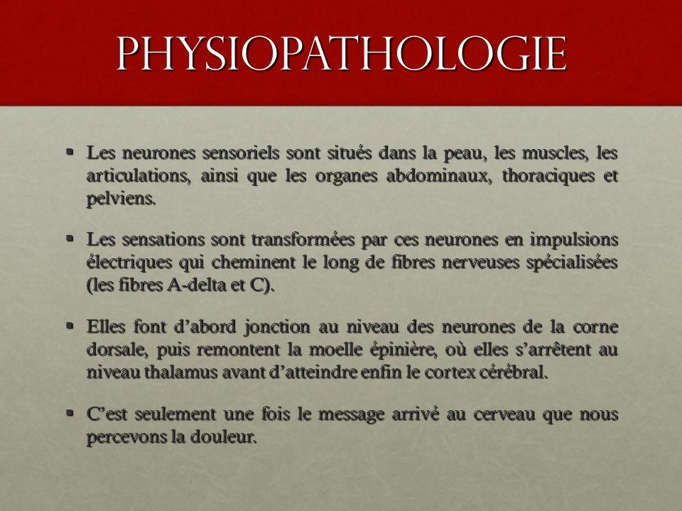 physiopathologie Les neurones sensoriels sont situés dans la peau, les muscles, les articulations, ainsi que les organes abdominaux, thoraciques et pe