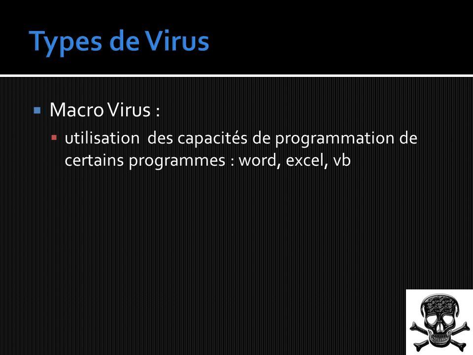 Macro Virus : utilisation des capacités de programmation de certains programmes : word, excel, vb