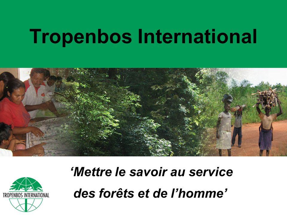 Tropenbos International Mettre le savoir au service des forêts et de lhomme