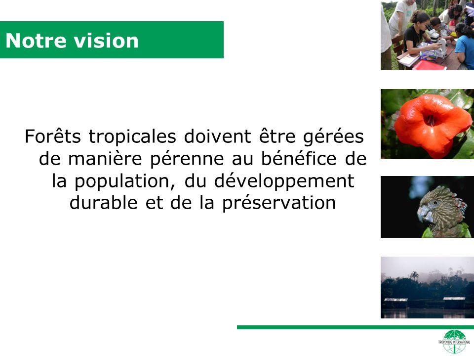 Notre vision Forêts tropicales doivent être gérées de manière pérenne au bénéfice de la population, du développement durable et de la préservation