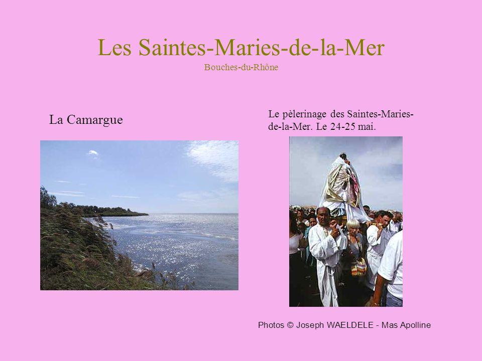 Les Saintes-Maries-de-la-Mer Bouches-du-Rhône La Camargue Le pèlerinage des Saintes-Maries- de-la-Mer. Le 24-25 mai. Photos © Joseph WAELDELE - Mas Ap