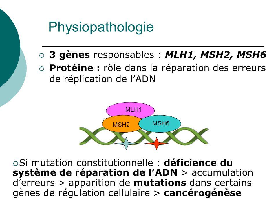 Physiopathologie 3 gènes responsables : MLH1, MSH2, MSH6 Protéine : rôle dans la réparation des erreurs de réplication de lADN MSH2 MSH6 MLH1 Si mutat