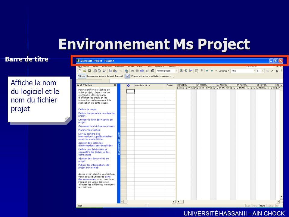 Environnement Ms Project Barre de menu UNIVERSITÉ HASSAN II – AIN CHOCK Affiche les principales commandes du programme