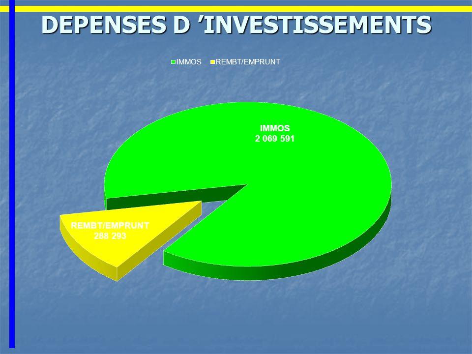 DEPENSES D INVESTISSEMENTS