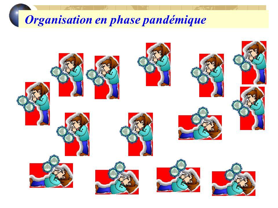 Organisation en phase pandémique