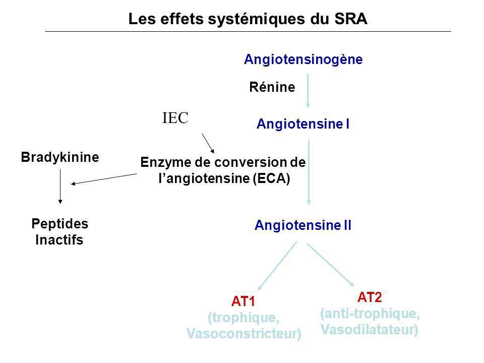 Bradykinine Angiotensinogène Angiotensine I AT2 (anti-trophique, Vasodilatateur) AT1 (trophique, Vasoconstricteur) Angiotensine II Rénine Enzyme de co
