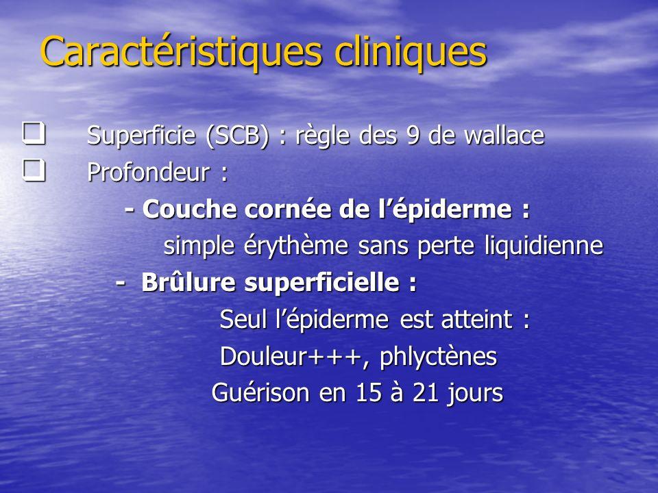 Caractéristiques cliniques Caractéristiques cliniques Superficie (SCB) : règle des 9 de wallace Superficie (SCB) : règle des 9 de wallace Profondeur :