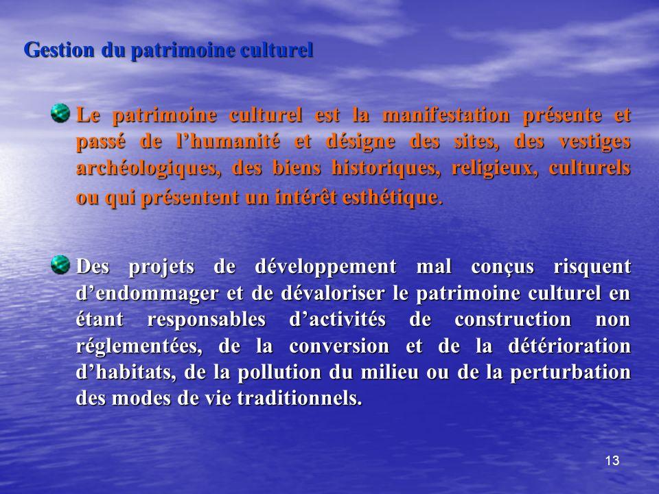 13 Gestion du patrimoine culturel Le patrimoine culturel est la manifestation présente et passé de lhumanité et désigne des sites, des vestiges archéo