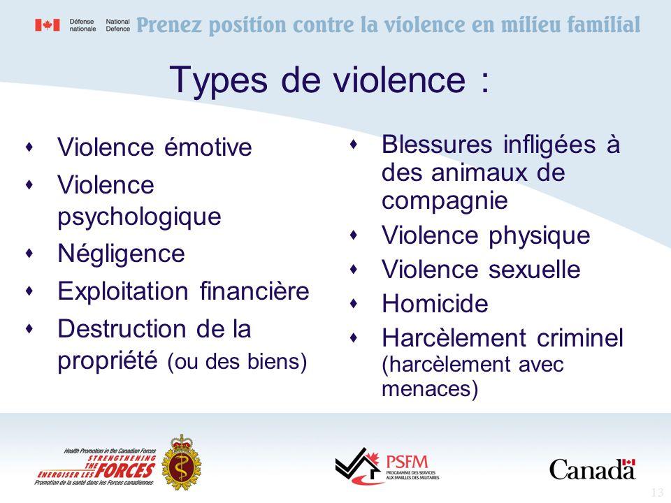 13 Types de violence : Violence émotive Violence psychologique Négligence Exploitation financière Destruction de la propriété (ou des biens) Blessures