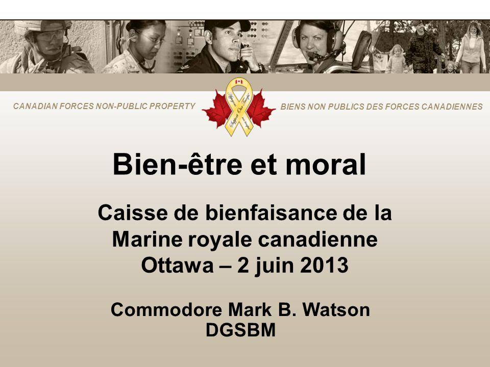 CANADIAN FORCES NON-PUBLIC PROPERTY BIENS NON PUBLICS DES FORCES CANADIENNES Bien-être et moral Commodore Mark B.