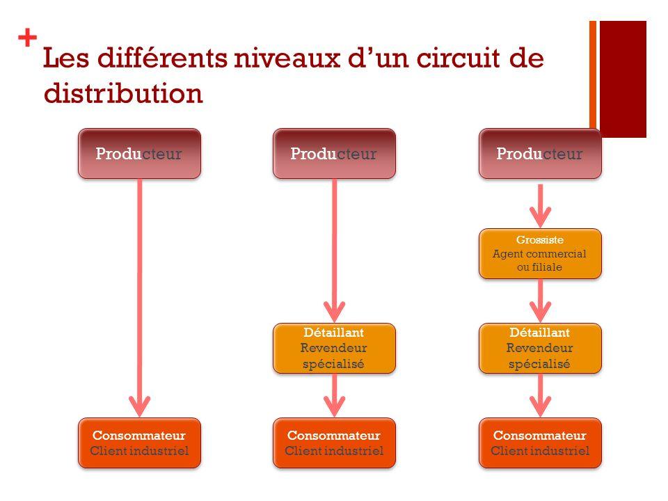+ Les différents niveaux dun circuit de distribution Producteur Consommateur Client industriel Consommateur Client industriel Consommateur Client indu