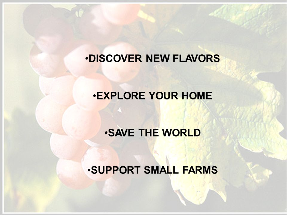 DISCOVER NEW FLAVORS EXPLORE YOUR HOME SAVE THE WORLD SUPPORT SMALL FARMS