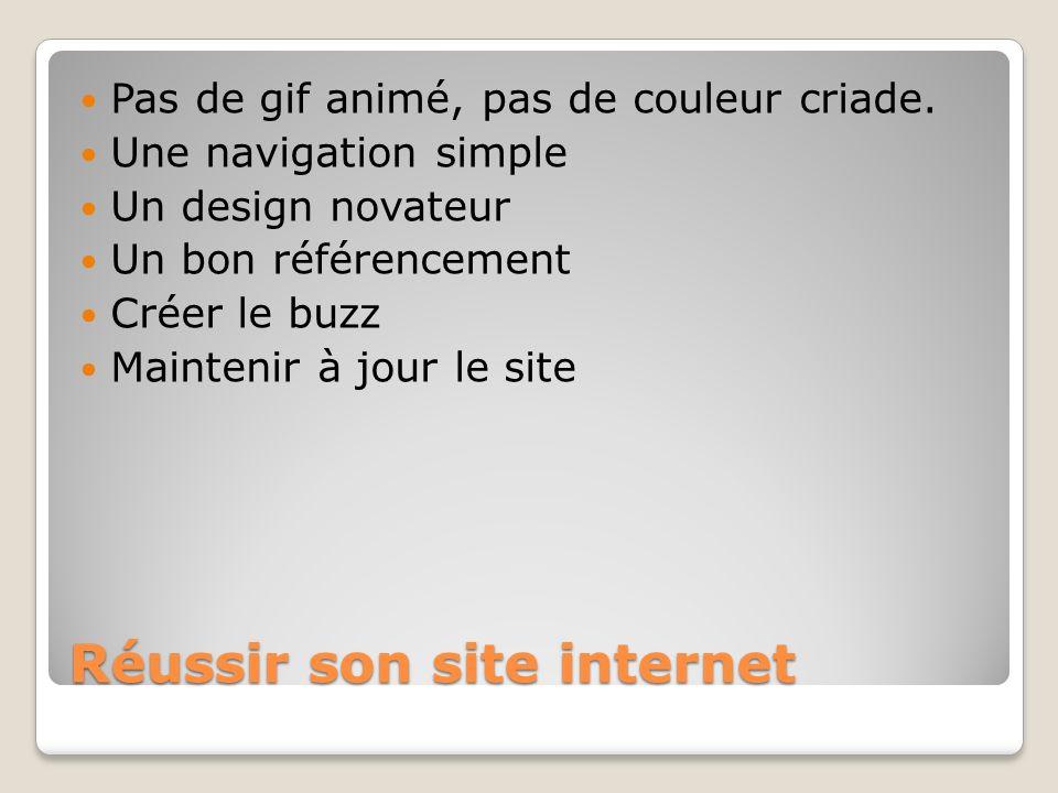 Réussir son site internet Pas de gif animé, pas de couleur criade. Une navigation simple Un design novateur Un bon référencement Créer le buzz Mainten