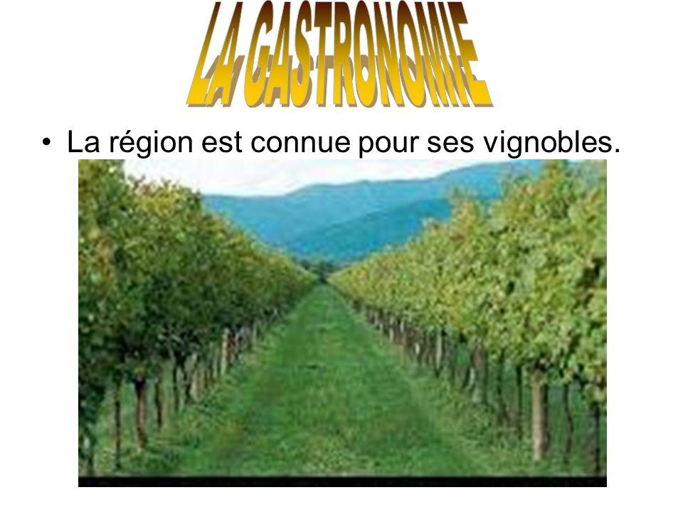 La région est connue pour ses vignobles.