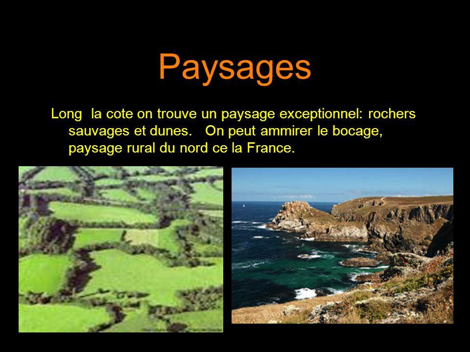 Paysages Long la cote on trouve un paysage exceptionnel: rochers sauvages et dunes. On peut ammirer le bocage, paysage rural du nord ce la France.